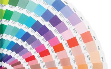 Кой е най-грозният цвят на света?